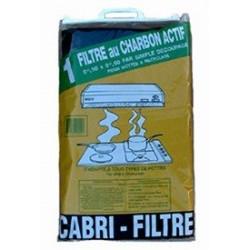 FILTRE PR HOTTE CHARBON ACTIF       808031