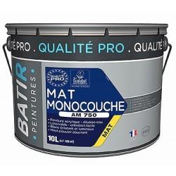 PEINTURE MAT MONOCOUCHE AM750 10 L BLANC