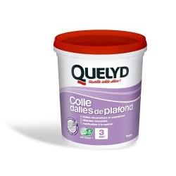 DALLE PLAFOND COLLE 1 K QD