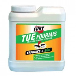 FURY INSECTICIDE POUDRE 250G