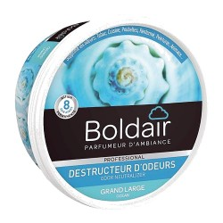 BOLDAIR GEL DESTRUCTEUR D'ODEUR GRAND LARGE 300G