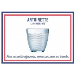 LE VERRE FRANCAIS ANTOINETTE 31 CL PAR 6 NOUVEAU