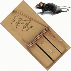 TAPETTE RAT *15